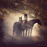 Warmblut; Herde; Morgenlicht; Ecuador; Pferdefotograf; Pferdefotografie; Pferd; Pony; Horse; Equus; Equestrian; Equine; photography; photographer; animal; Pferdefotoworkshop; Pferdefotografieworkshop; Workshop; Fotoworkshop