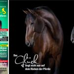 Pferdefotografie, horse, photography, fineart, Pferdefotograf