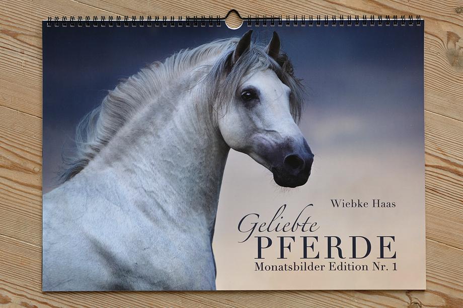 Geschenk, Fotogeschenk, Weihnachten, Weihnachtsgeschenk, Pferd ...