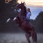 animal, equine, equus, fine art, horse, horse photography, Pferd, Pferde, Pferdefoto, Pferdefotograf, Pferdefotografie, photography,  Tierfotograf, Tierfotografie, Workshop, Fotokurs, Know-How