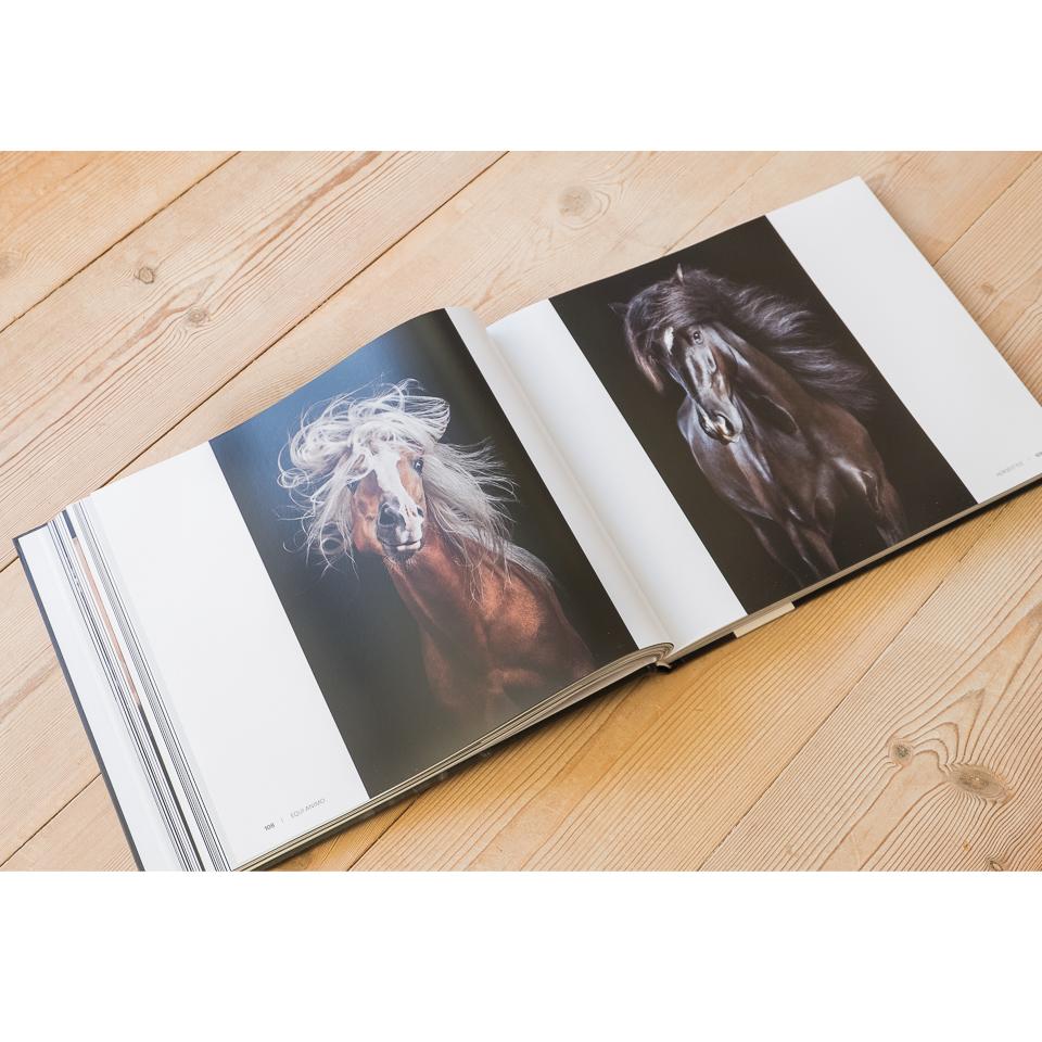 """Im Kapitel """"Horsestyle"""" finden sich alle Fotos meiner preisgekrönten, gleichnamigen Serie."""